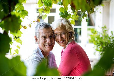 Close-up portrait of smiling senior couple standing in yard