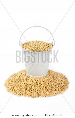 White bucket full of millet stands on a heap millet on a white background