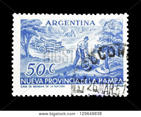 ARGENTINA - CIRCA 1956 : Cancelled postage stamp printed by Argentina, that shows Tree cutting.