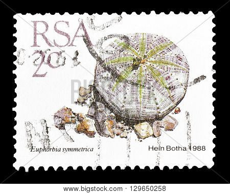 SOUTH AFRICA - CIRCA 1988 : Cancelled postage stamp printed by South Africa, that shows Euphorbia symmetrica.