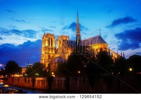 Notre Dame  cathedral illuminated  at blue night, Paris, France, toned