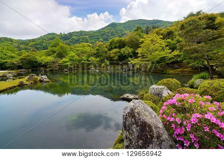 Beautiful Japanese pond garden surrounded by pink azalea flowers and green trees