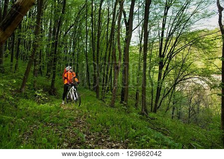 Cyclist in orange jersey Riding the Bike on the Trail in the Beautiful Summer Forest
