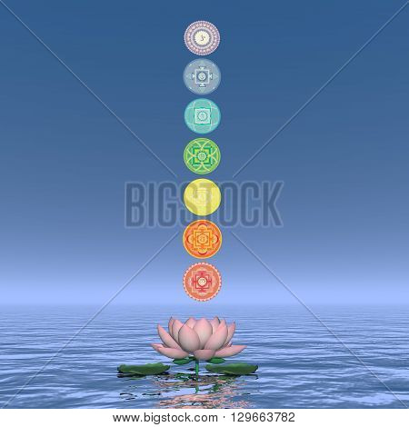 Seven chakra symbols column upon one lotus flower and water in blue background - 3D render