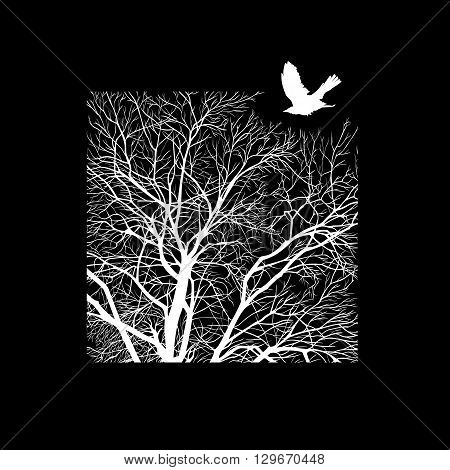 minimalistic cropped image of a winter tree in the square. design element for cards, simple concise illustration.