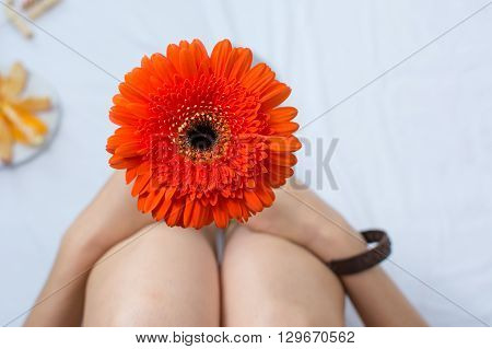 Woman Holding A Gerbera Flower In Bed