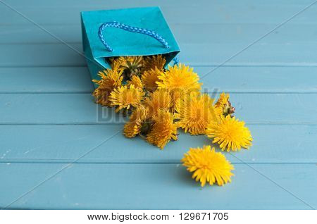 Dandelion Flowers In Blue Bag