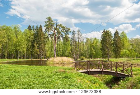 Summer landscape with forest lake and pines on the island