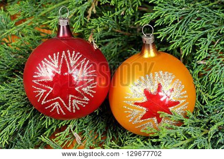 Two colorful Christmas balls on green pine needles red and orange Santa Claus Christmas time