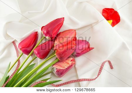 Red Tulips On A White Fabric