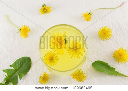 Dandelion Tree With Dandelion Flowers