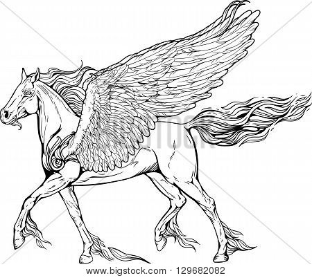 Image of pegasus with mane and tail of flames of fire.