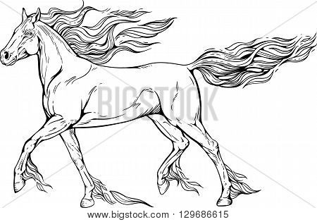 Image of a horse with mane and tail of flames of fire.