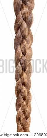 Braided hair in a braid of four parts isolated on white background