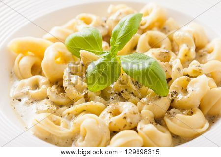 Delicious dish of tortellini with pesto in white plate