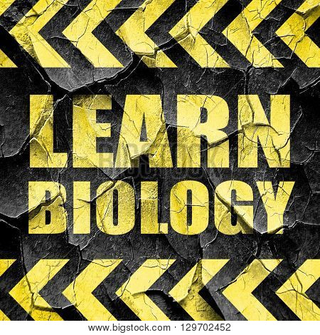 learn biology, black and yellow rough hazard stripes