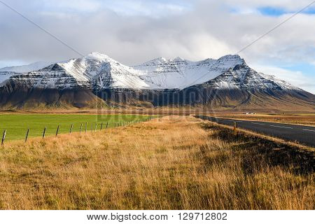Empty road yellow-green fields and snowcapped mountains Beautiful landscape in early winter of Iceland
