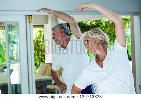 Senior couple doing aerobics at home