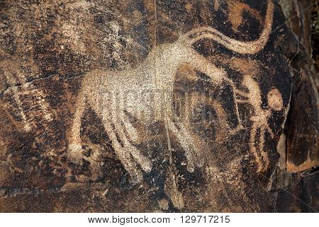 Petroglyph With Animals On The Rock