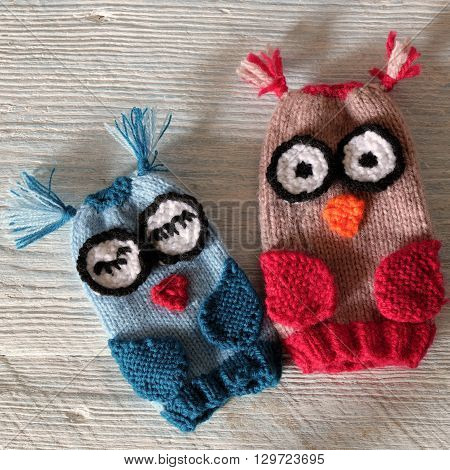 Owl Puppet For Children Day