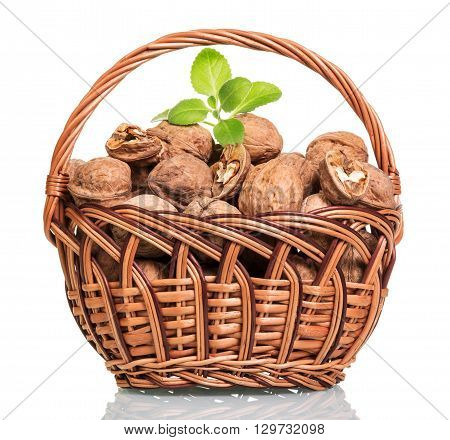 Basket filled with walnuts isolated on white background