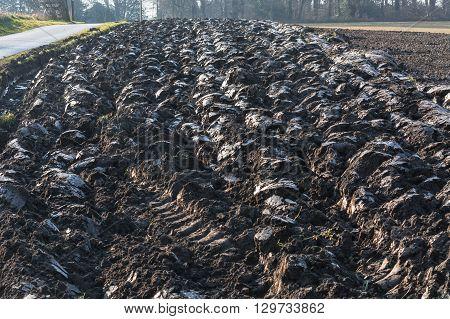 farmland, Freshly plowed field field in Germany.