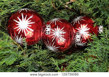 Three red Christmas balls on green pine needles Santa Claus Christmas time