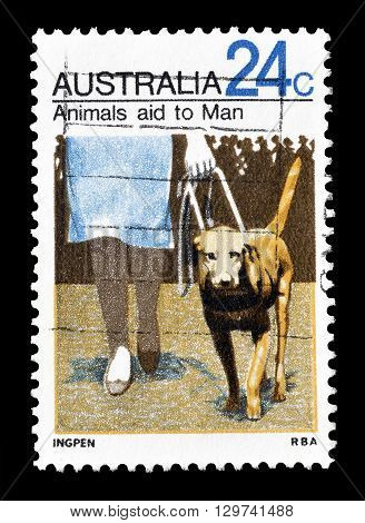 AUSTRALIA - CIRCA 1971 : Cancelled postage stamp printed by Australia, that shows Seeing eye dog.
