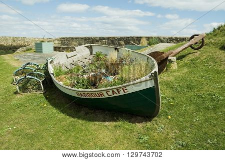 an image of an old rowing boat filled with flowers and turned into a sign at the seaside