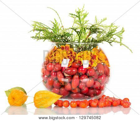 Composition in a round glass vase of flowers and rose hips, mountain ash. Isolated on white background