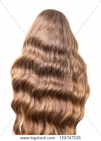 Luxury brown curly hair flowing on the back isolated on white background.