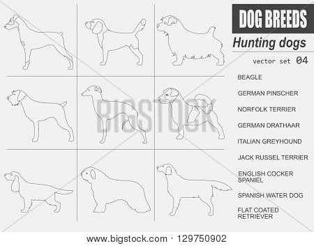 Dog breeds. Hunting dog set icon. Flat style. Vector illustration