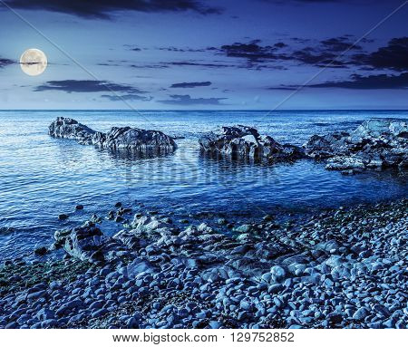 Rocky Sea Coast With Seaweed At Night