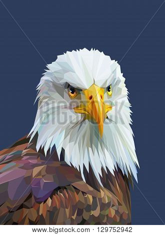 Low poly poster with eagle. Colorful wild bird. Triangle vector illustration eps 10