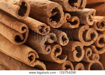 Raw Organic Cinnamon sticks (Cinnamomum verum).Macro closeup background texture. Front side view.