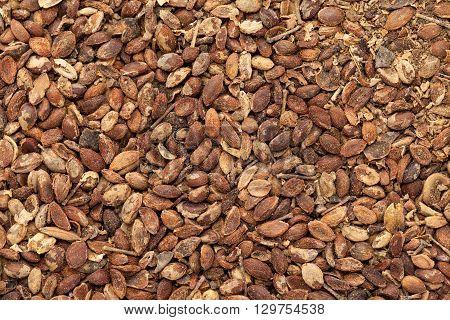 Organic Black oil plant or Climbing staff tree or Malkangani or Jyotishmati (Celastrus paniculatus) seeds. Macro closeup background texture. Top View.