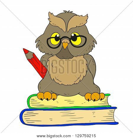 Cartoon character graduation owl with glasses. Vector