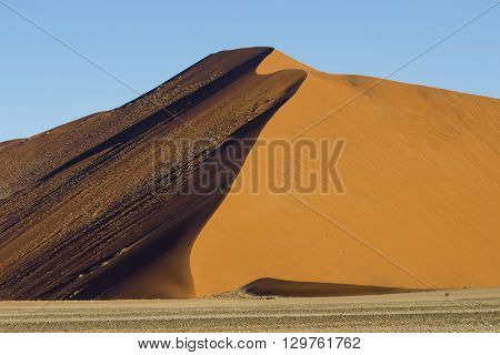 The crest of a red dune in the Namib Desert in Sossusvlei in the Namib-Naukluft National Park of Namibia
