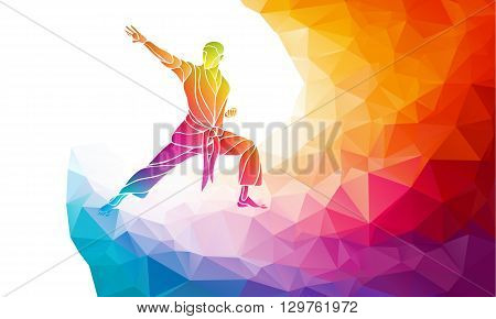 KARATE power kick. Martial arts silhouette. Detailed color rainbow vector illustration in polygonal geometric style