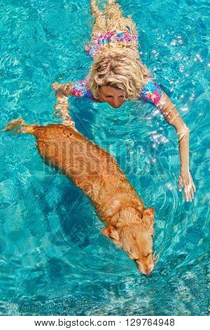 Funny photo of sunbathing woman playing with dog and training dog puppy in swimming pool with blue water. Popular dog breeds outdoor activity and fun games with family pet on summer beach holiday.