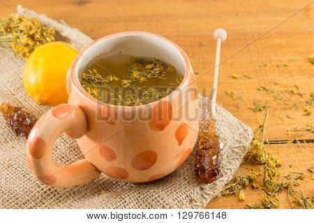 St Johns wort tea and surrounded by dried kantarion plants