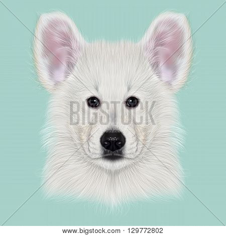 Illustrated Portrait of White Swiss Shepherd dog. Cute white fluffy face of domestic puppy on blue background.