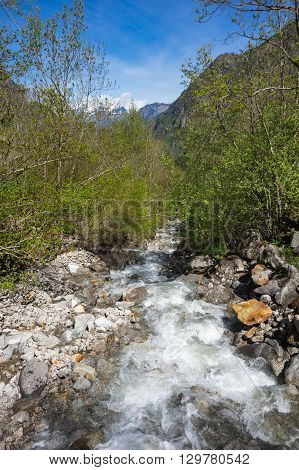 Mountains brook in National park Ecrins in France