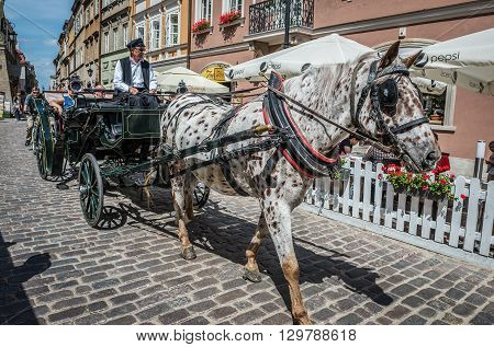 WARSAW POLAND - AUGUST 1 2015. Man driving horse-drawn carriage on the Old Town of Warsaw