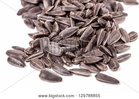 unpeeled sunflower seeds on a white background.