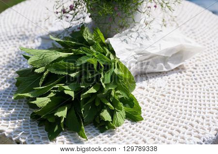 Fresh green bundle of mint in a paper packet on the white tablecloth