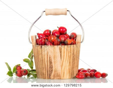Small wooden bucket filled with fresh rose hip berries isolated on white background.