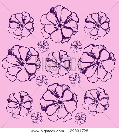 Sketch flowers pattern. Color illustration. Flowers line icon, thin contour on colored background