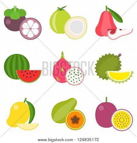 Fruit icons set, tropical fruit: durian, mangosteen, watermelon, mango, coconut, flat design