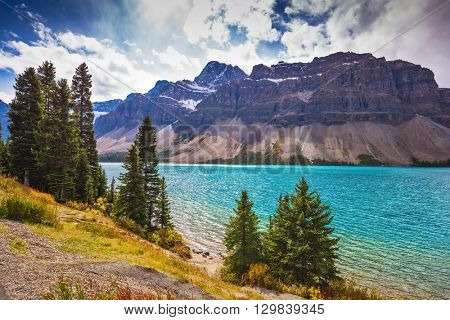 The majestic mountain glacial Bow Lake with green water. The lake is surrounded by pine trees. Banff National Park in the Canadian Rockies